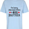 boerne t-shirt i'm being promoted to big brother blaa