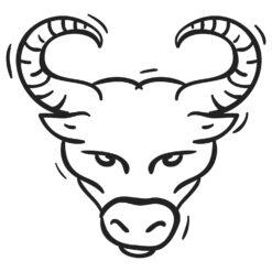 Wallsticker stjernetegn tyren